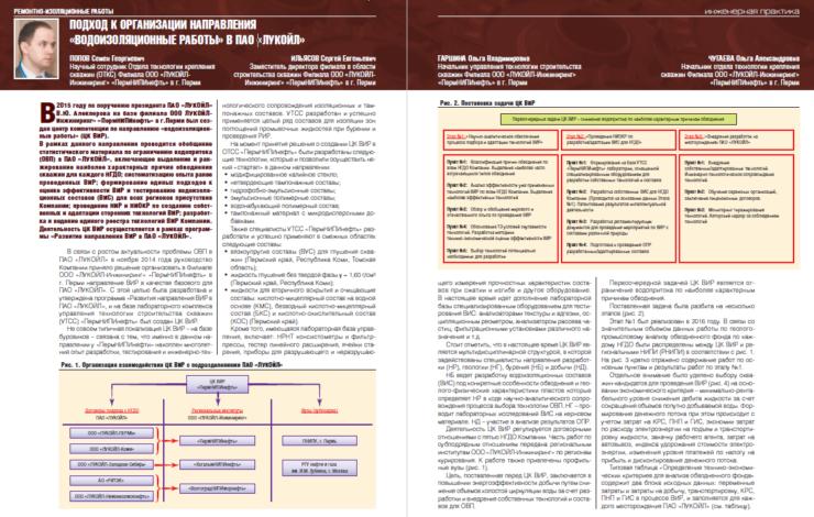 Подход к организации направления «водоизоляционные работы» в ПАО «ЛУКОЙЛ»