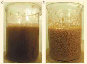 Рис. 3. Состав «Тамолекс» до (а) и после (б) взаимодействия с минерализованной водой