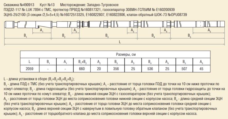 Рис. 11. Комплектация верхней установки ЭЦН и БЛ в составе компоновки ОРЭ