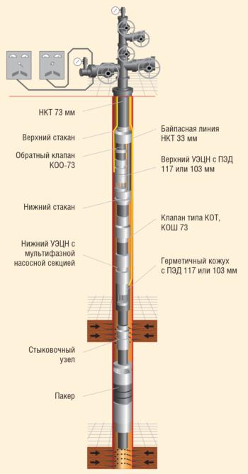 Рис. 1. Компоновка ОРЭ по схеме ЭЦН-ЭЦН с БЛ