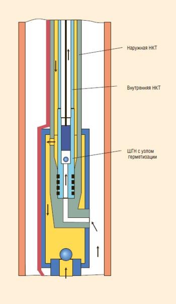 Рис. 17. Установка ЭЦН-ШГН с двумя концентричными колоннами НКТ