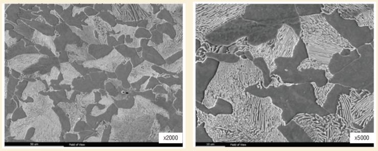 Рис. 5. Характерная микроструктура металла исследованных НКТ