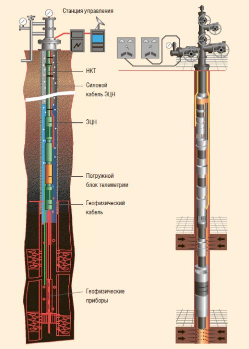Рис. 3. Компоновка УОРЭП-ЭЦН (слева) и дуальная система ЭЦН-ЭЦН (справа)