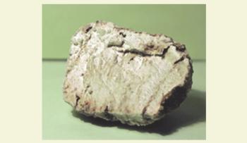 Рис. 5. Образец отвердившегося реагента из скважины с глубины 2600 м