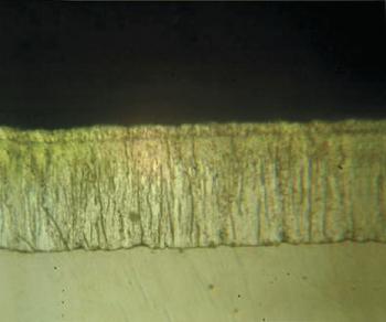 Рис. 2. Интерметаллидный слой покрытия Majorpack