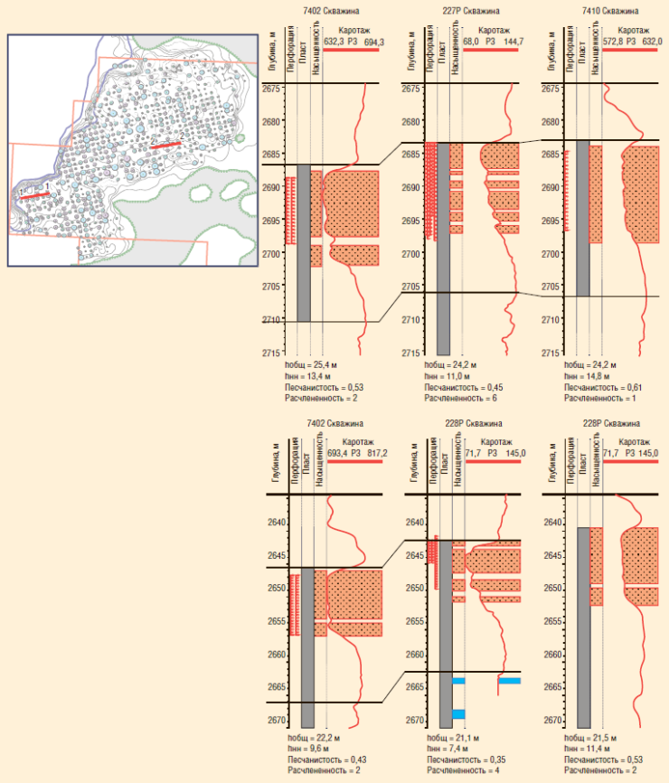 Рис. 2. Геолого-физические характеристики участка