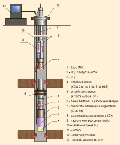 Рис. 4. Схема компоновки ОРД типа ЭЦН-ШГН, ЭЦН под пакером