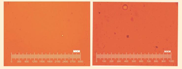 Рис. 5. Микрофотографии исходной товарной нефти