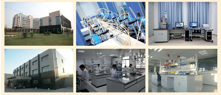 Рис. 5. Научно-исследовательские центры Hilong Group