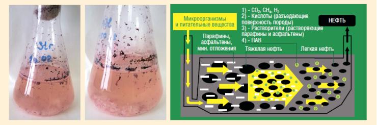 Рис. 8. Пример применения технологии MEOR при заводнении