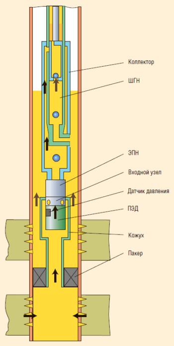 Рис. 7. Схема ОРЭ ЭЦН(ЭВН)-ШГН