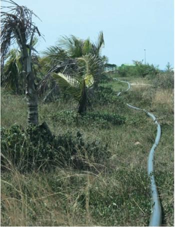 Рис. 5. Эксплуатация мобильной трубопроводной системы в тропических условиях