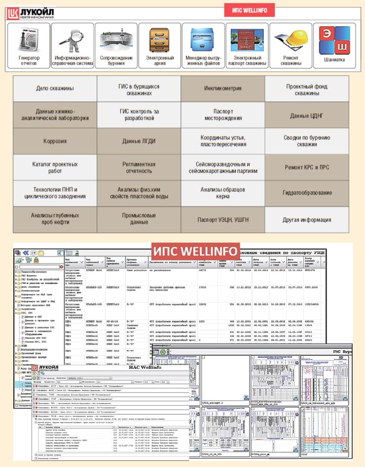 Рис. 6. Информационная система Wellinfo