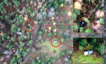 Рис. 2. Незаконная заготовка леса в охранной зоне трубопровода