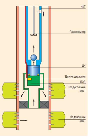 Рис. 3. Система внутрискважинной перекачки