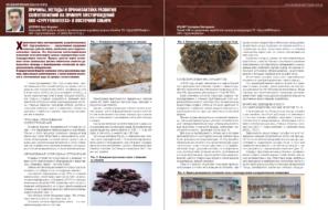 Причины, методы и профилактика развития солеотложений на примере месторождений ПАО «Сургутнефтегаз» в Восточной Сибири